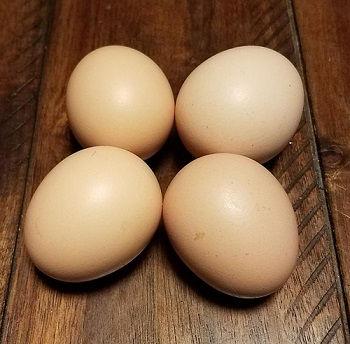 bresse eggs
