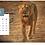 Thumbnail: Calendar 2021