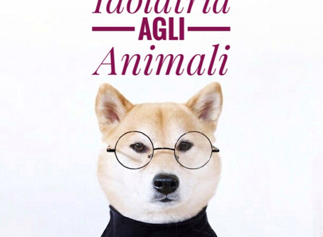 Idolatria agli Animali