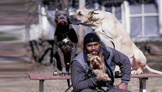 Chris Carr - Stronghaus dog trainer