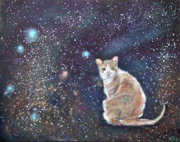 Jessie in the stars