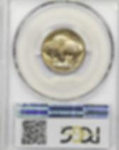 buffalo nickel.jpg