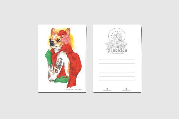 Chihuahua Mon Laferte