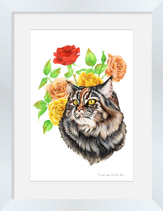 Gato Rosas