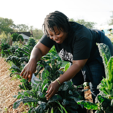 Planting seeds for the future at South Carolina's first Black Farmers Conference