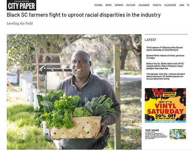 charleston city paper coalition article.