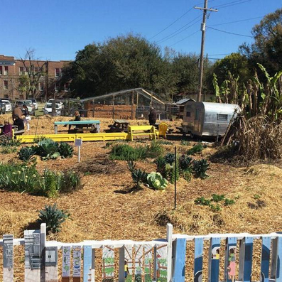 How one SC woman is creating an oasis in a food desert