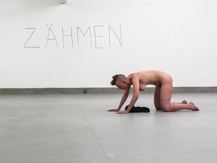 TAME (ZAHMEN)