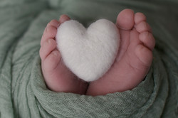 photographe naissance Artemare, Belley, Aix les Bains, Seysselphoto naissance