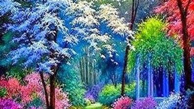 Beautiful Trees 9