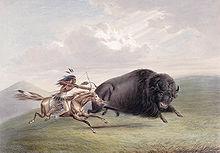 Bison Hunt.jpg