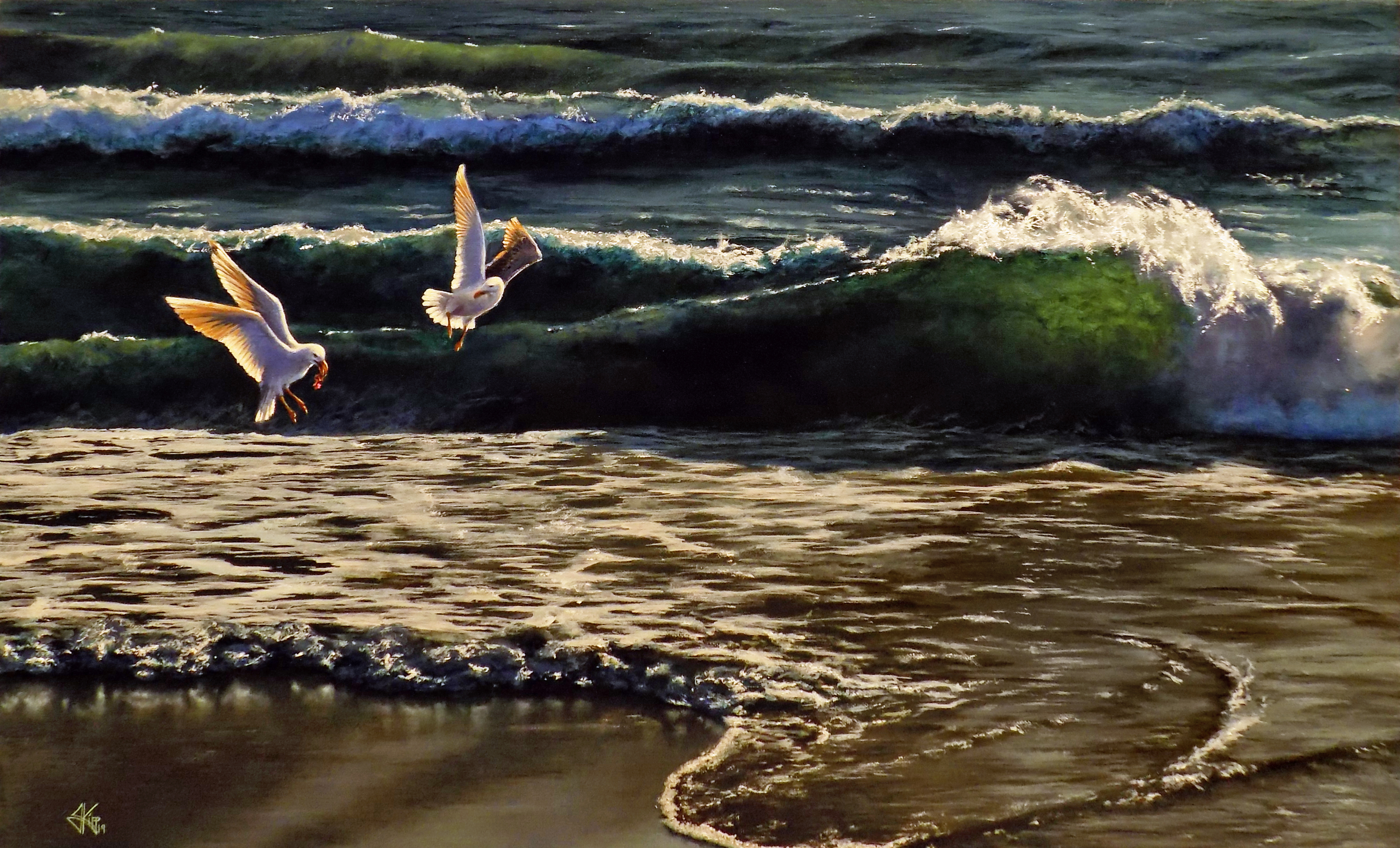 Huron Gulls