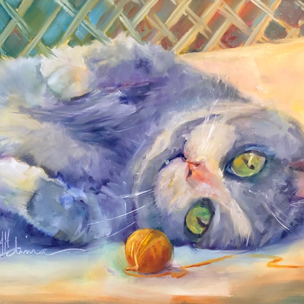 Litty Cat