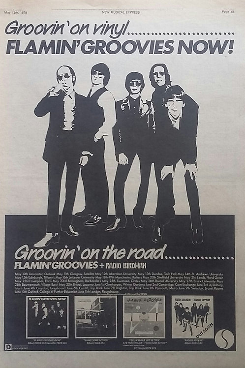 The Flamin' Groovies - Tour