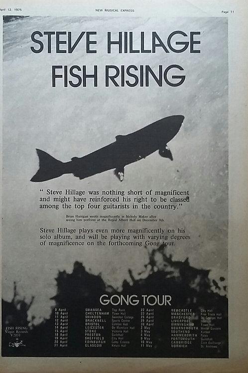 Steve Hillage – Fish Rising