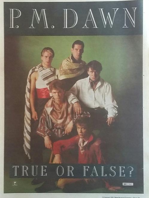 P.M. Dawn - True Or False ?