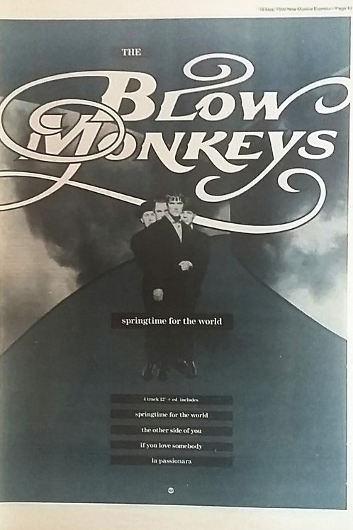The Blow Monkeys - Springtime For The World