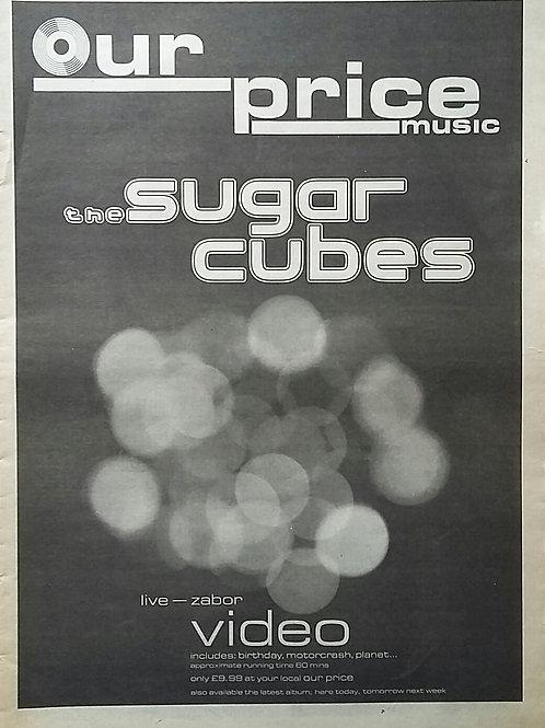 The Sugar Cubes – Live Zabor