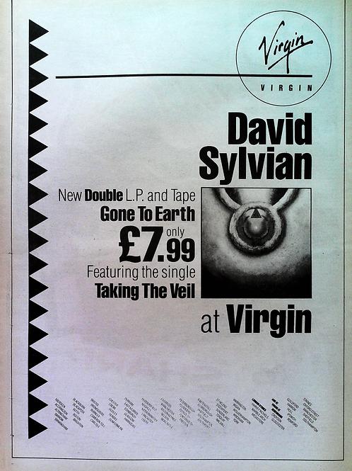 David Sylvian - Gone To Hearth