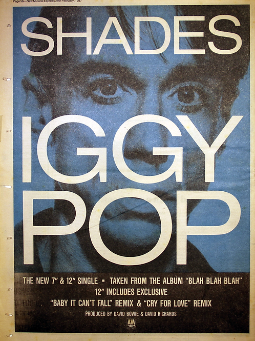 Iggy Pop - Shades