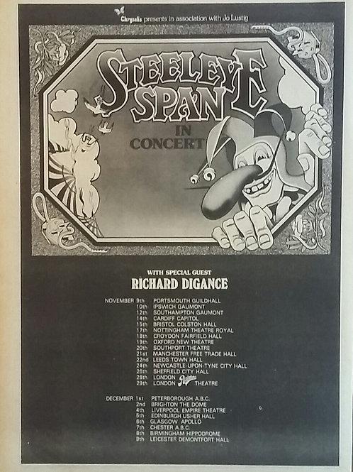 Steeleye Span - In Concert