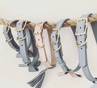 Customisable Leather Collars