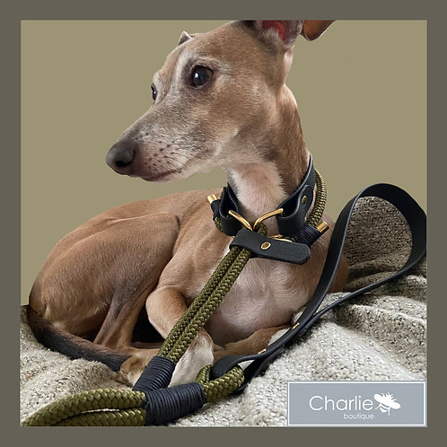 The Country Quick Release Lead &Day Collar