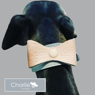 Customisable Leather Sighthound Collars