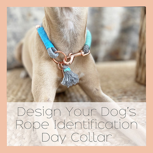 Design Your Dog's Rope Identification Day Collar