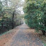 Ciclovia a sud del Parco Beata Cittadini