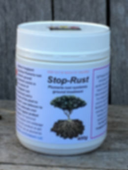 Stop rust systemic ground treatment.JPG