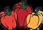 Pimeta de Cheiro Restaurante Ilhabela logo