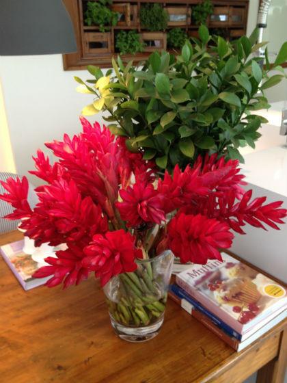 Blog-Harmonizando-com-flores-Adriana-Leal-Design-de-Interiores-2.jpg