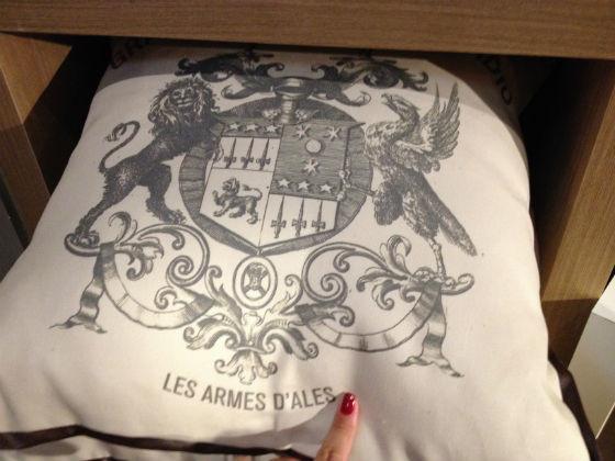 Almofadas-como-usar-Adriana-Leal-Interiores-3.jpg