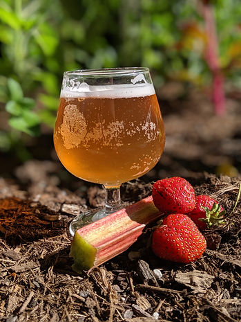 Strawberry Rhubarb Booch.jpg