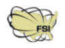 FSI icon.PNG