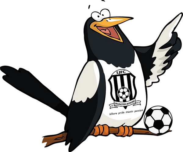 Little magpies logo transparent.png