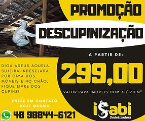Promo Descup.png