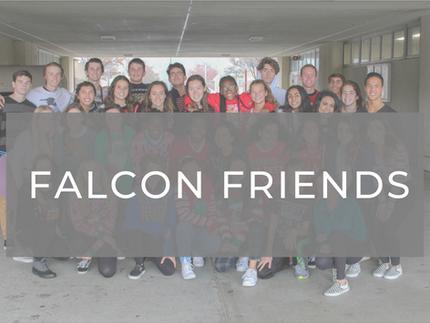 Falcon Friends