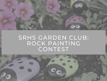 Rock Painting Contest