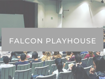 """Falcon Playhouse : """"Working"""""""