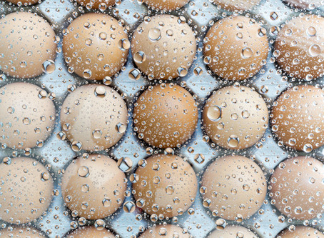 All About Egg Freezing