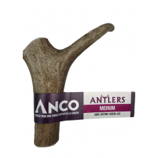 Anco Antler - Medium