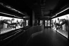 Bar diseño Gabbana,  Pub musical, Valladolid