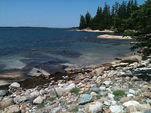 Maine Coast Canvas Photo
