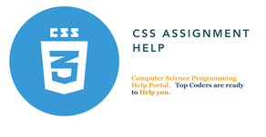 CSS Assignment Help   Common Issue with CSS For Front End Developers