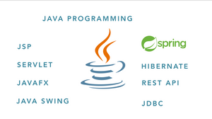 Appointment Scheduler - Java GUI or Java Project Help