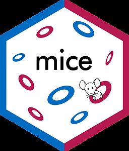 MICE_package_R_programming_codersarts.png