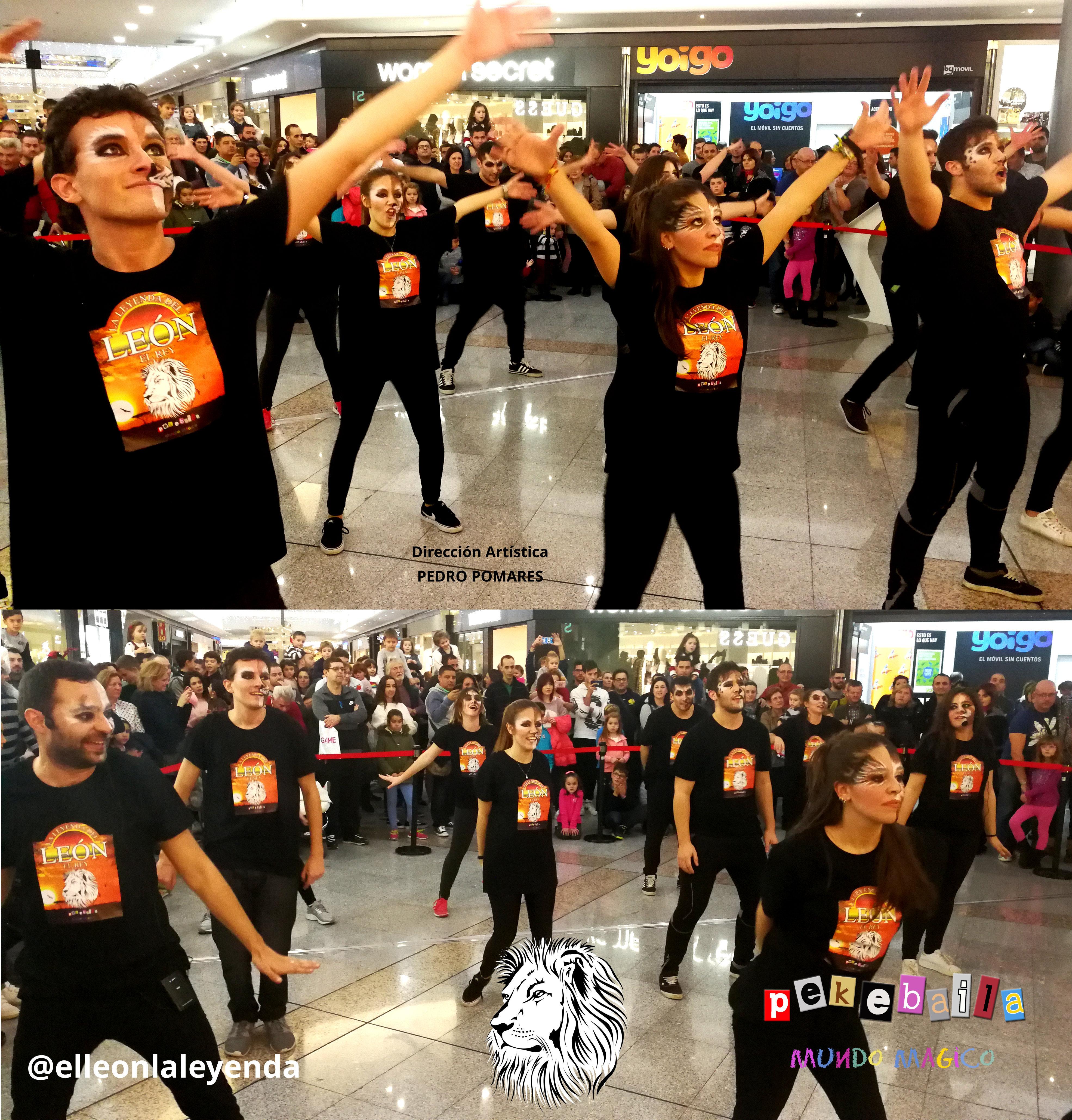 @elleonlayenda flashmob promo.jpg r.jpe3