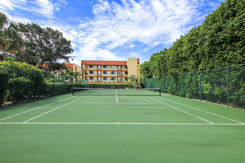 25 Tennis